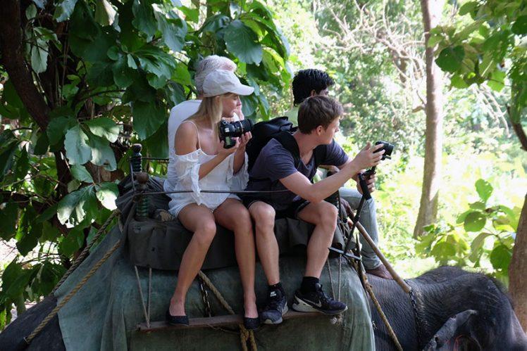 Tigersafari fra elefantryggen
